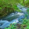 山と海が近い神戸ならではの川の綺麗さがいいですね!