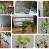 気づけばたくさんの植物に囲まれています