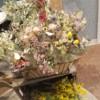 greenの店内にお花屋さん【アチェ・デ・フローレス・シールコ】さんがやって来ました!販売もしています♪