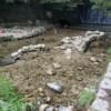 三宮から車で15分以内にある川遊びができる大土神社横の穴場スポット