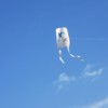 明石海峡公園で何十年ぶりかの凧あげをして童心に帰りました