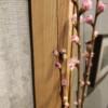 花桃のつぼみが開いて来ました!!